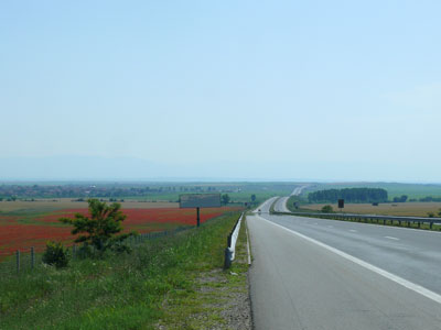 road_summer_bg