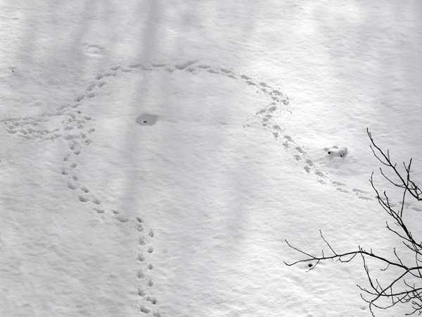myst_footprints_snow