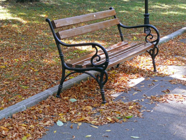 autumn_bench